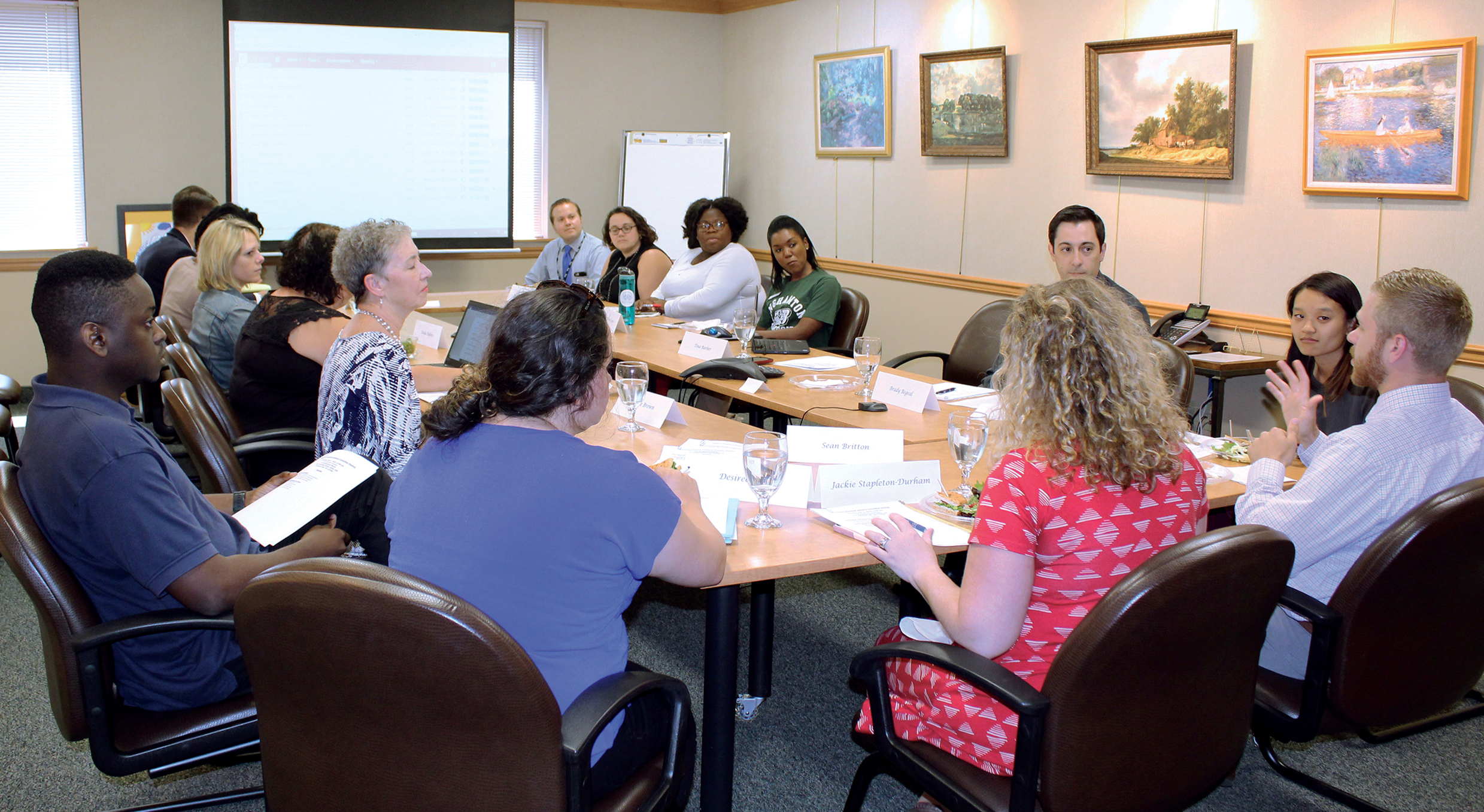 Photo of Young Professional Advisory Committee meeting taking place